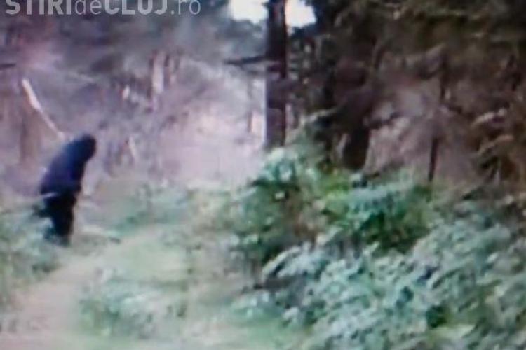 O nouă filmare cu Bigfoot face furori pe Internet VIDEO