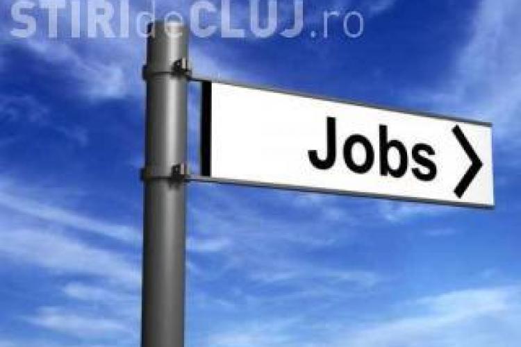 Clujenii au la dispoziţie 1.212 locuri de muncă vacante