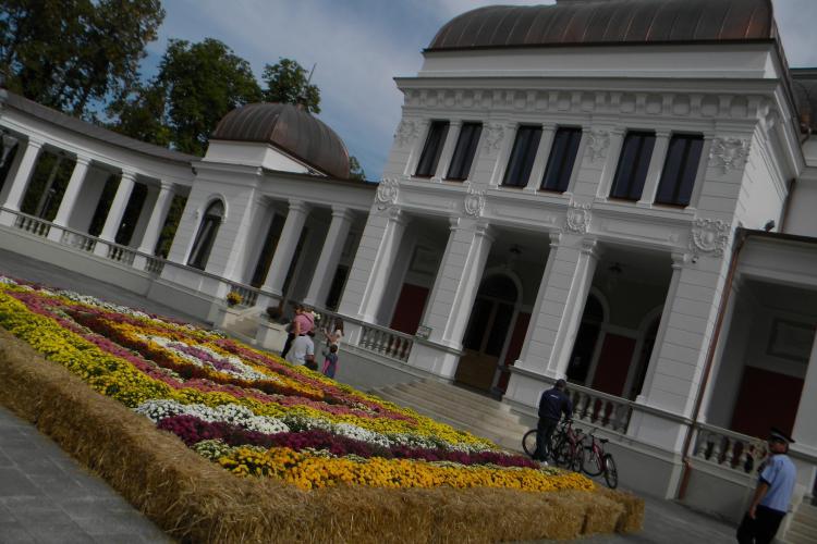 Covor cu flori, așternut în fața Cazinoului din Cluj-Napoca - FOTO