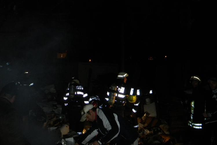 Adăpostul de animale de pe Valea Fânațelor, cartierul Iris, a ars. O femeie și 120 de câini și pisici au murit