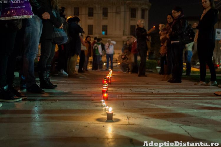 FLASHMOB pentru victimele incendiului de la adăpostul de câini din Cluj - VIDEO