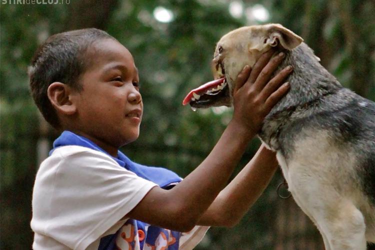 Câinele care a rămas fără bot după ce a salvat două fetițe va fi operat în SUA - FOTO IMPRESIONANTE