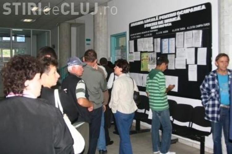 Peste 1.500 de locuri de muncă disponibile în Cluj