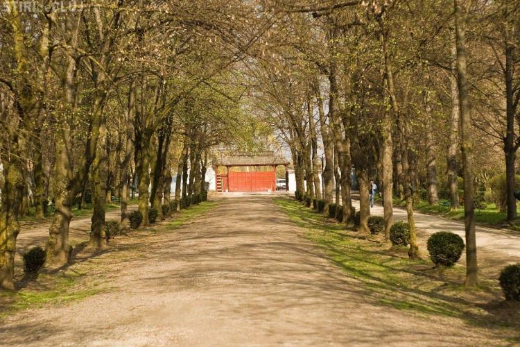 Parcul Babeș va fi reabilitat din fonduri europene