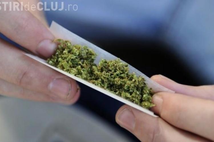Două state americane au legalizat consumul de marijuana