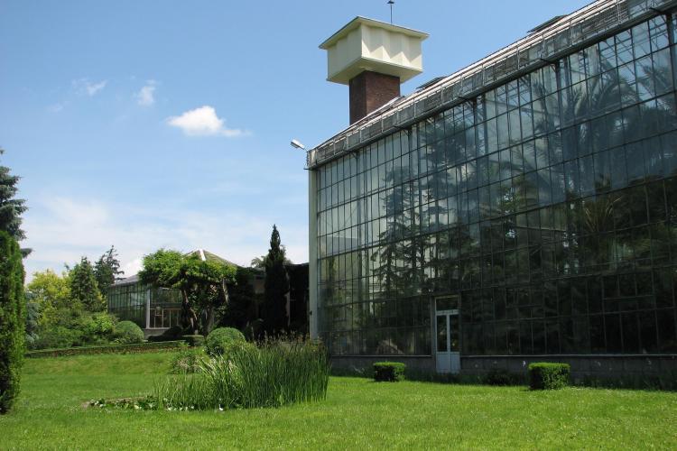 Serele Gradinii Botanice din Cluj-Napoca vor fi închise o zi