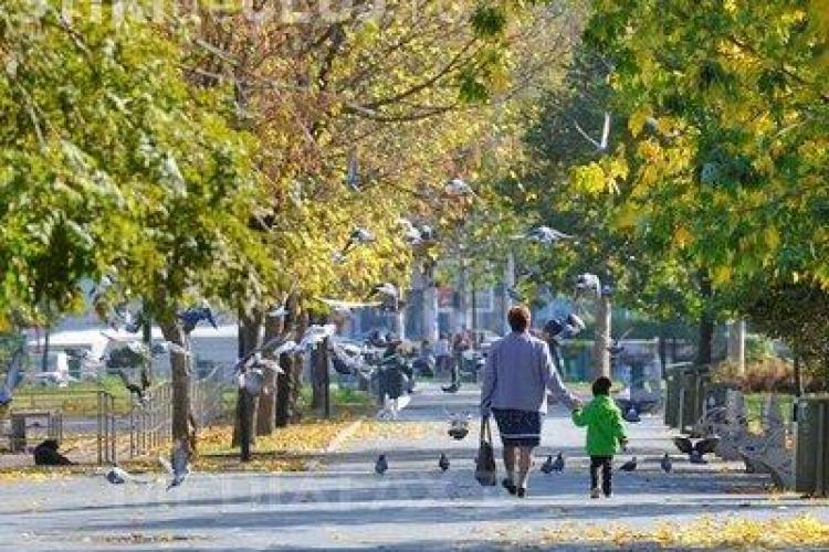 Scad temperaturile. PROGNOZA METEO pentru intervalul 12 noiembrie - 25 noiembrie