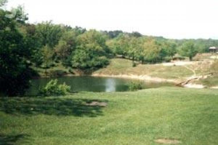 """S-a inecat in """"lacul Tarzan"""" de la Baile Sarate din Turda. Corpul unui barbat disparut duminica a fost gasit plutind pe apa"""