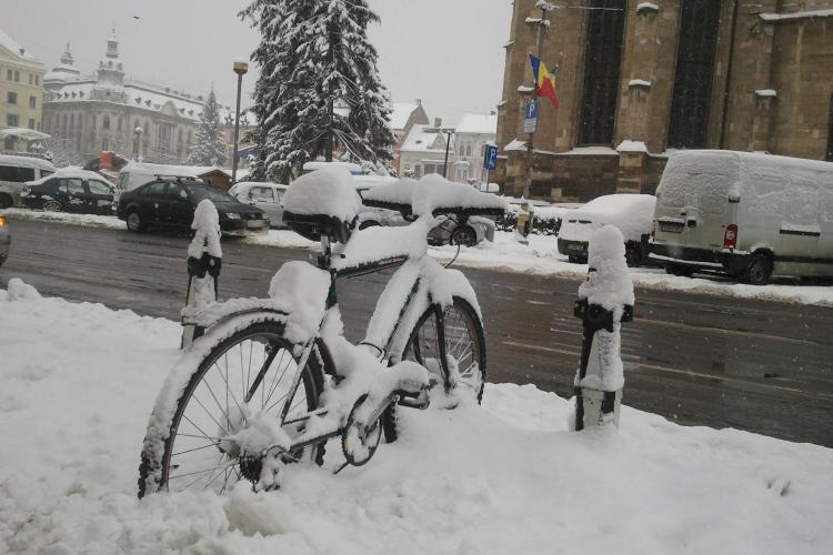 Iarnă ca în POVEȘTI la CLUJ! Zăpada te scoate din casă la săniuș sau la schi - FOTO