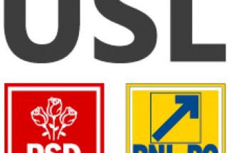 """USL Cluj acuză PDL că folosește """"trupe de asalt"""" care rup materialele electorale ale Uniunii (P)"""