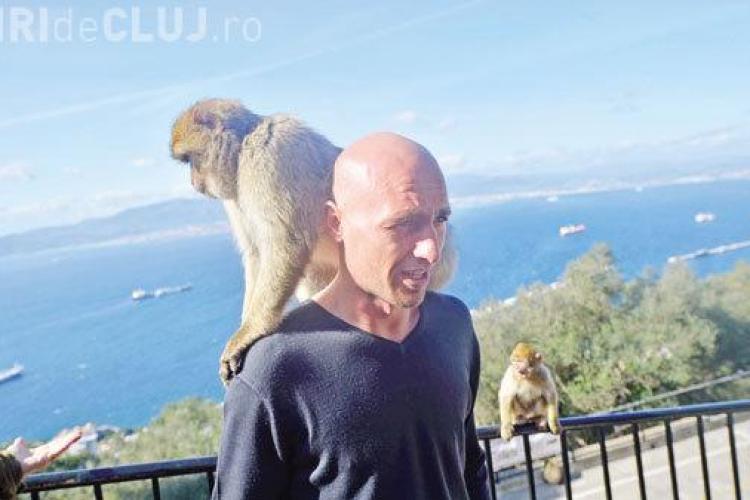 Jucătorii CFR Cluj, asaltați de maimuțe în Gibraltar