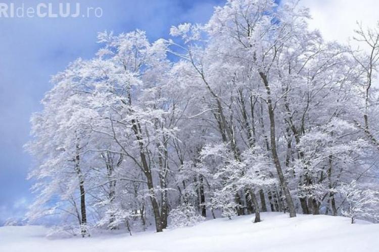 Prognoza METEO în Transilvania. GER în prima parte din ianuarie