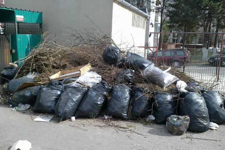 Tarifele la salubritate, majorate în Cluj-Napoca
