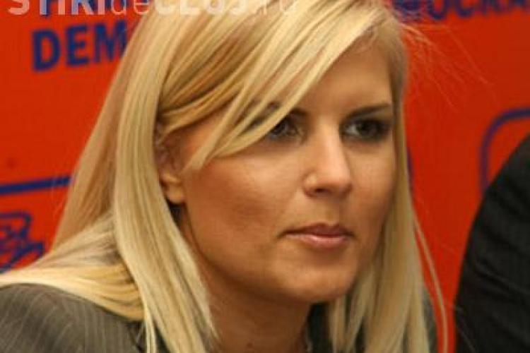 Elena Udrea: Boc trebuie să revină în conducerea partidului