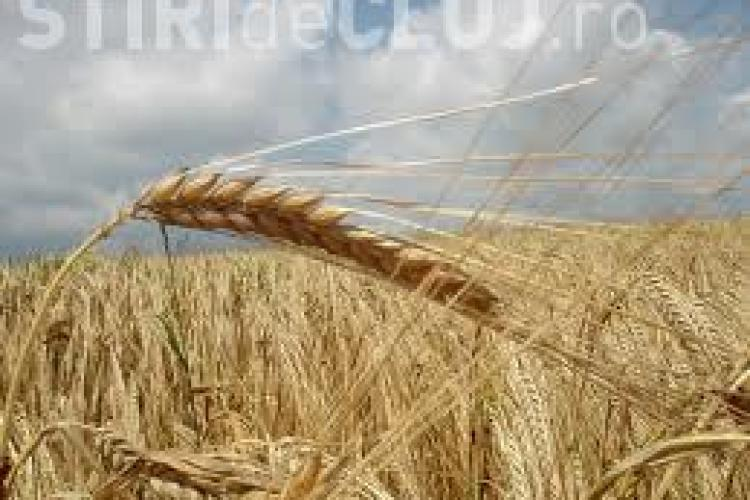 La Cluj s-a constituit primul Cluster Agricol din România, pe modelul clusterelor IT