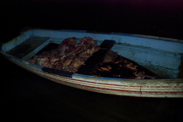 500 de kilograme de carne în lacul Tarnița. Posibil să fie de cal? - FOTO