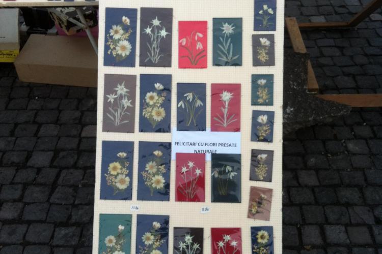 Floare de colţ presată, scoasă la vânzare în Piaţa Unirii! Floarea este protejată prin lege - FOTO