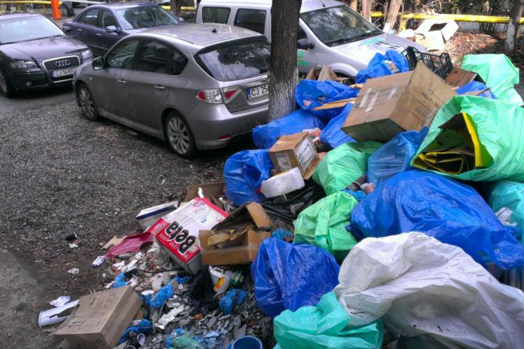 Gunoi, deșeuri medicale și miros insuportabil în curtea Institutului lui Mihai Lucan - FOTO