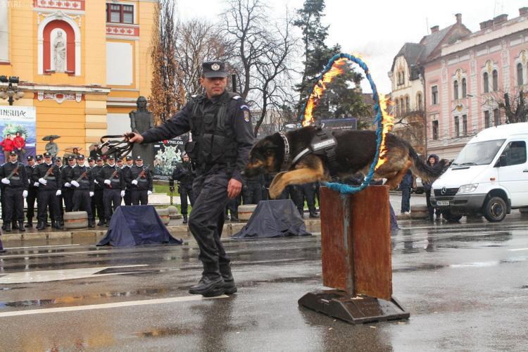 Exerciții spectaculoase în Piața Avram Iancu de Ziua Jandarmeriei Române - FOTO