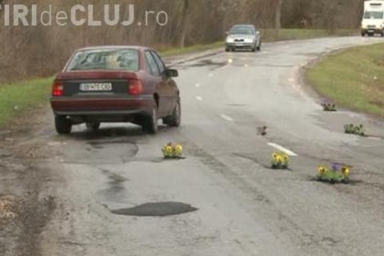 Pe un drum național cu cratere au fost plantate panseluțe - FOTO