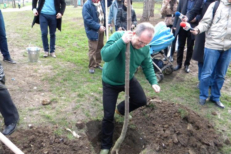 Pădurea Clujenilor va fi plantată zilele viitoare, pe Bulevardul Muncii
