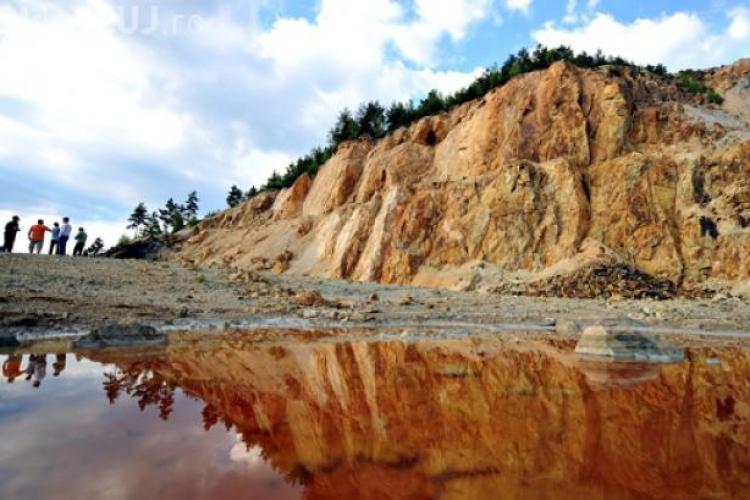 Rovana Plumb: Guvernul vrea desecretizarea licenţelor Roşia Montană