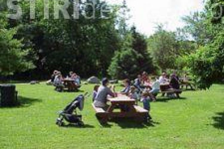STUDIU IRES: Doi din zece români pleacă undeva de 1 mai