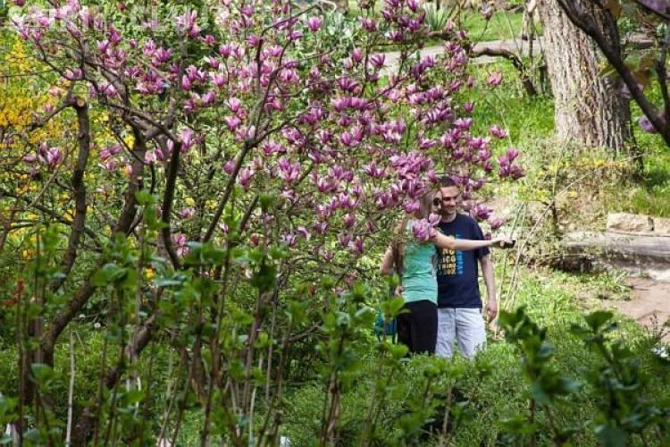 Flower Power în Grădina Botanică. Cea mai frumoasă lună din an e luna MAI - FOTO