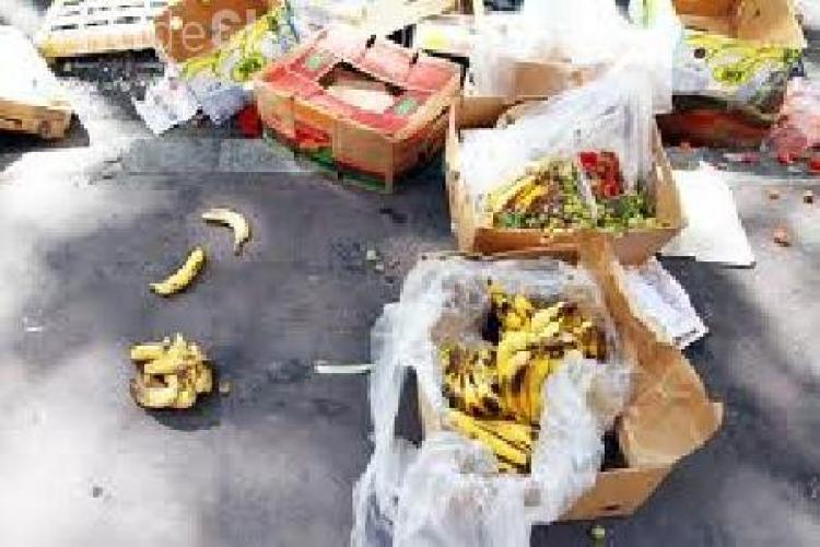 Rovana Plumb atrage atenția că România risipeşte cinci milioane de tone de alimente