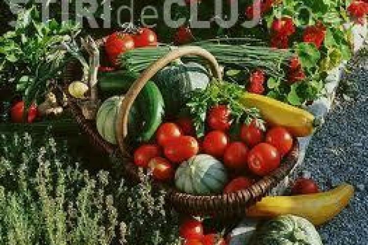 Alimentele de vară care te ajută să slăbești rapid