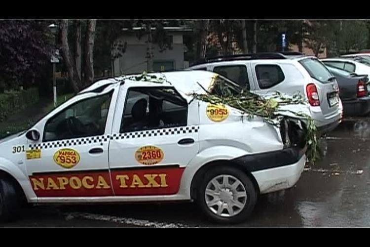 Taximetru făcut PRAF pe Septimiu Albini. Crengile unui copac au căzut peste mașină - VIDEO