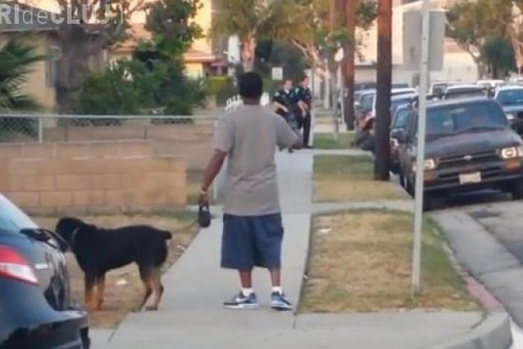 Incident șocant în SUA: Polițiștii împușcă câinele unui bărbat VIDEO ȘOCANT