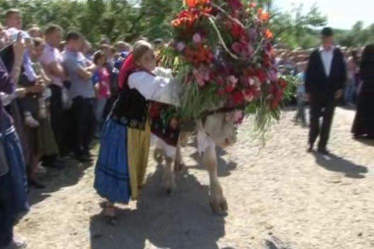 """Ceremonia de """"împănare a boului"""" la Parcul Etnografic """"Romulus Vuia"""" în weekend"""