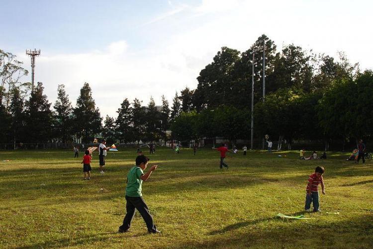COLOURS of CLUJ: Cum te distrezi în Parcul Central în perioada 1 - 4 august