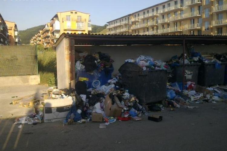 Gunoaiele menajere din Florești, neridicate de o săptămână - FOTO