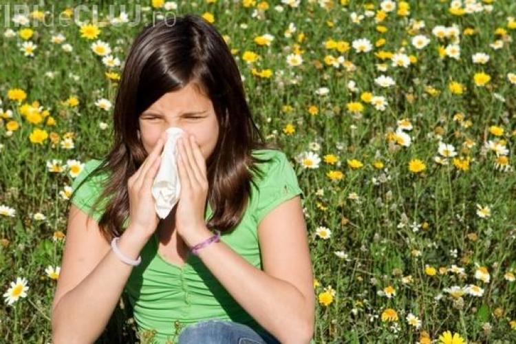 Top 10 surse neștiute ale alergiilor din casa ta