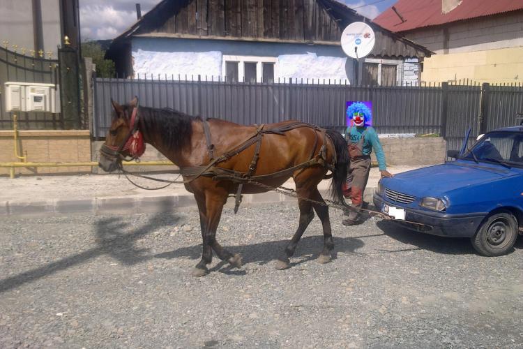 Un bărbat din Gilău și-a tractat Dacia defectă cu CALUL. Localnicii au râs de el - FOTO