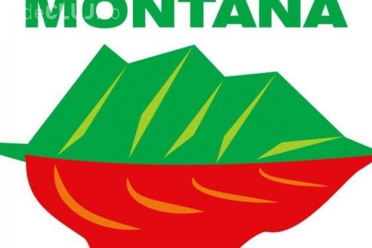 Parlamentul a aprobat o comisie specială pentru Roșia Montană
