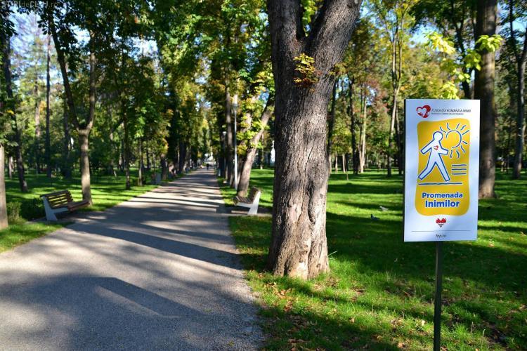 Două zone de promenadă, inaugurate la Cluj-Napoca cu ocazia Zilei Mondiale a Inimii - FOTO
