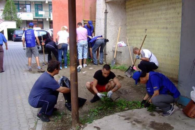 Japonezii vor să curețe parcul Detunata din Cluj-Napoca