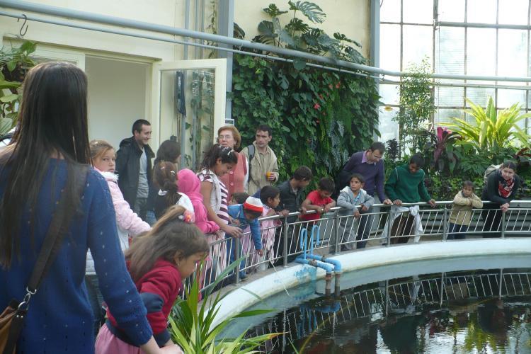 Un grup de studenți de la Facultatea de Sociologie i-a dus pe copiii de la Pata Rât la Grădina Botanică