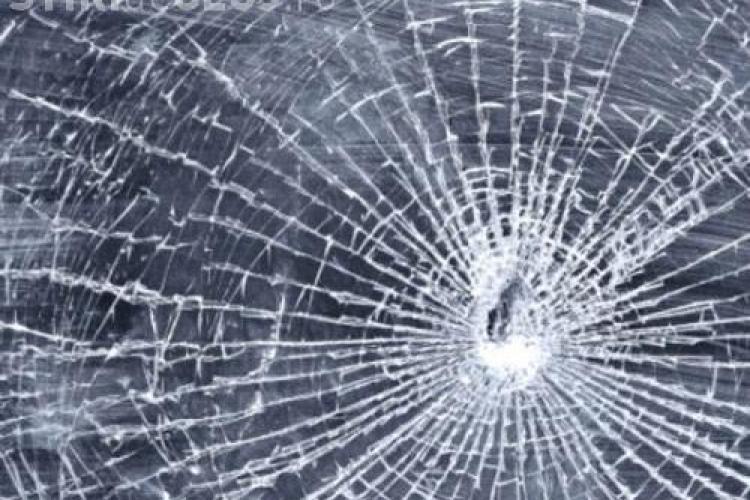Hoții de brazi de Crăciun din Călățele au aruncat cu pietre după mașina poliției