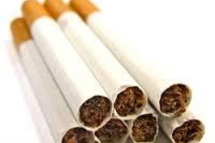 Sute de pachete de țigări de contrabandă confiscate la Cluj