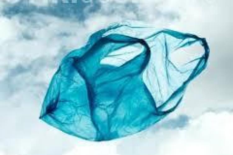 Pungile de plastic vor fi istorie. Parlamentul European cere interzicerea acestora până în 2020