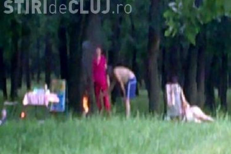 """Gratar la copac!  Niste """"petrecareti"""" au dat foc unui trunchi de copac dintr-o padure de langa Cluj-Napoca - VIDEO"""