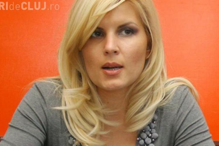 """Elena Udrea susține că incidentul din aeroportul Cluj a fost """"o diversiune"""" a lui Mircea Jorj"""