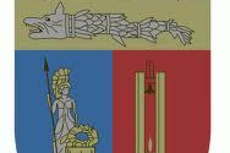 PNL acuză: Clujul folosește o stemă ilegală