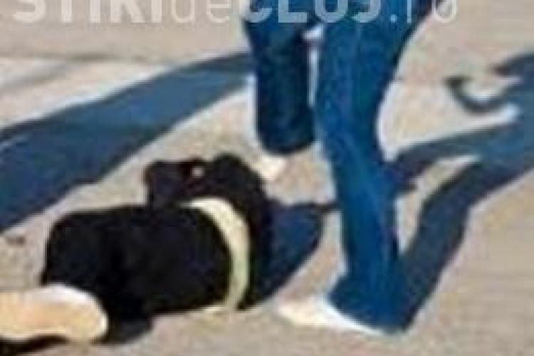 Eleva de 13 ani BĂTUTĂ cu cuțitul la gât! Poliția Cluj anunță un nou dosar penal după dezvăluirile unui părinte