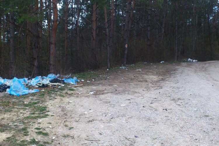 Pădurea Făget a ajuns rampă de gunoi - FOTO