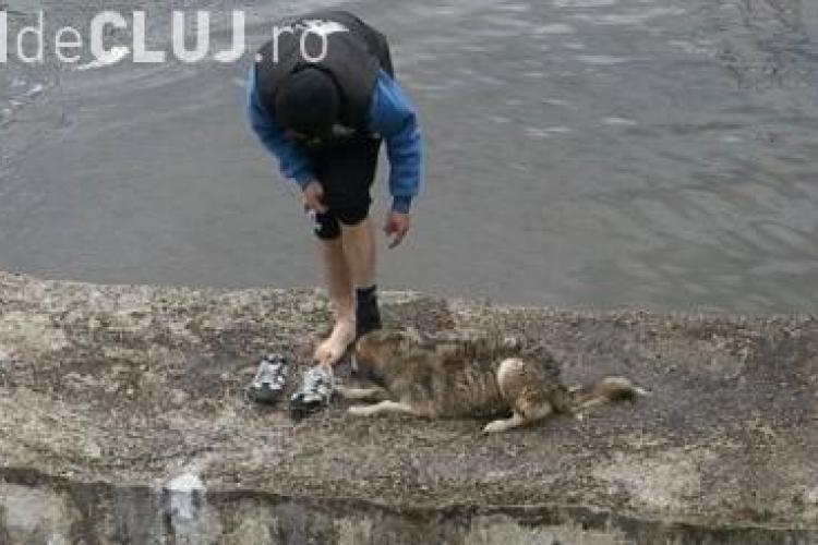 Clujeanul care a salvat câinele din Someș a fost lăudat de presa internațională